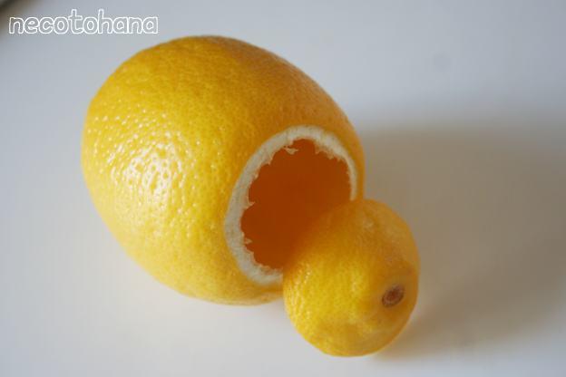 IMG_7712レモン2