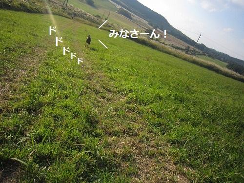 20120111205003590_20120120142026.jpg