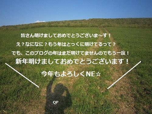 20120111205003815_20120120142026.jpg