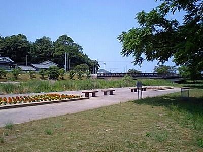 水辺公園4