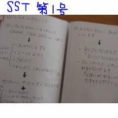 sst6.jpg