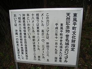 BG4.jpg