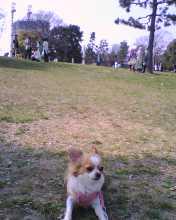 2007_0304_003.jpg