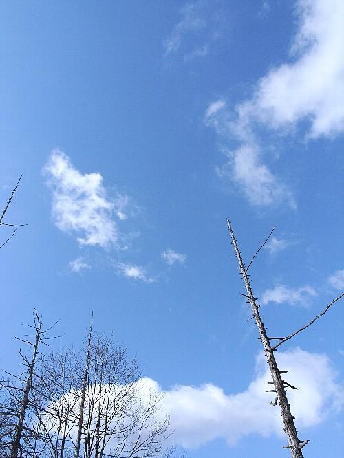 上高地の空