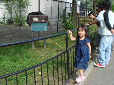 旭山動物園 だちょうの前で
