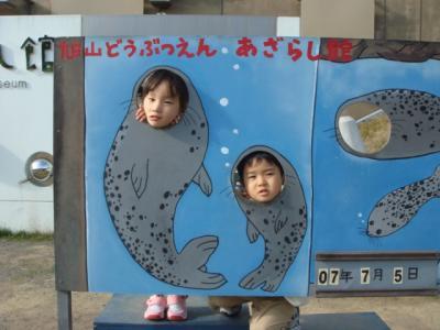旭山動物園 あざらし館で