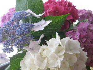 お花で癒されます。。