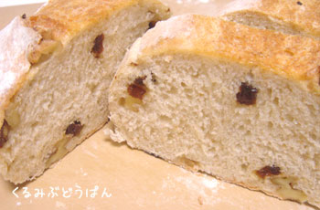 20070410kurumibudoupan.jpg