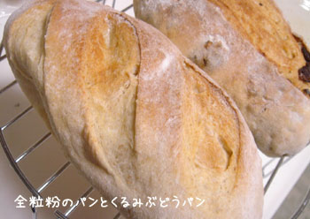 20070410zenryufunpan1.jpg
