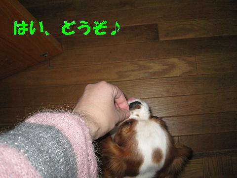 20070321181912.jpg
