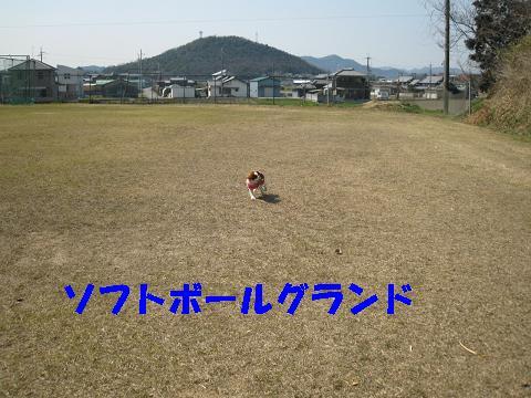 20070321182426.jpg