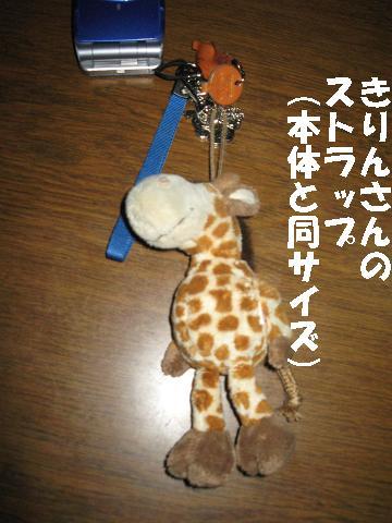 IMG_0135-2.jpg