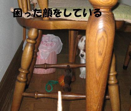 IMG_0152-2.jpg