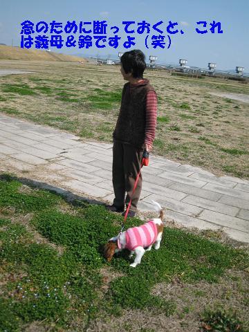 IMG_0184-2.jpg