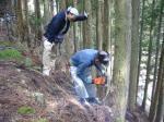 師匠の伐採