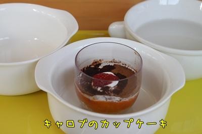 2011_0424_154158AA.jpg