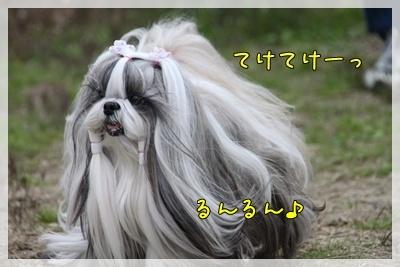 2011_0424_161853AA.jpg