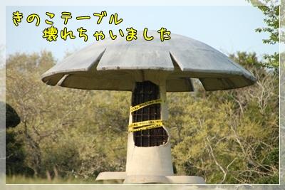 2011_0504_170523AA.jpg