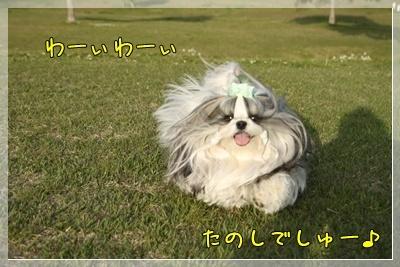 2011_0504_171652AA.jpg