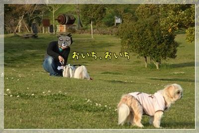 2011_0504_172641AA.jpg