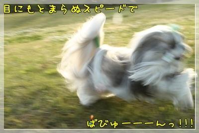 2011_0504_173025AA.jpg