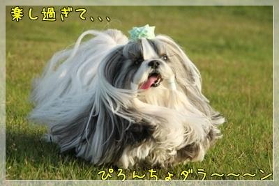 2011_0504_173742AA.jpg