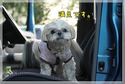 2011_0504_174639AA.jpg
