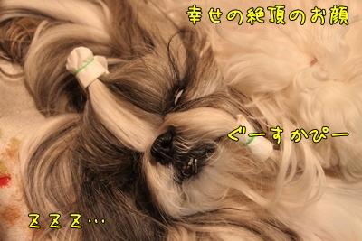 2011_0504_193215AA.jpg