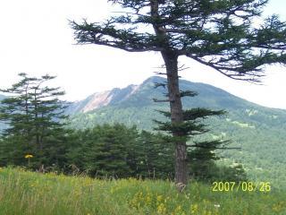高峰高原 その2