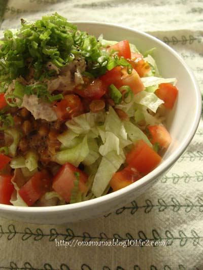 Salad Natto-Don
