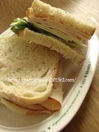 Chicken_20110518145851.jpg