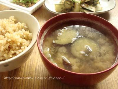 Miso_20110630144940.jpg