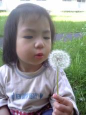 2007-05-08-1.jpg