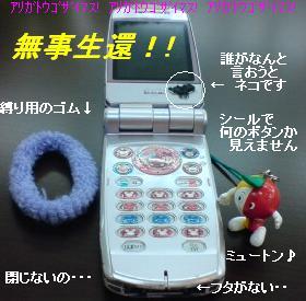 渦中の携帯ちゃんです・・・
