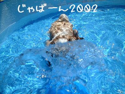 プール2002