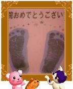 20060525161636.jpg
