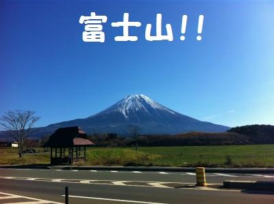 013_20111211111108.jpg