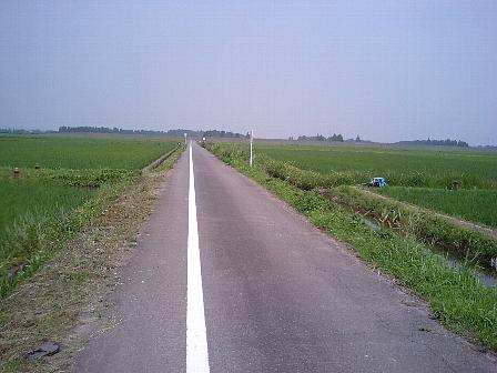 2007062006.jpg