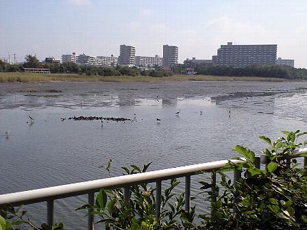 2007092204.jpg