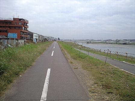 2007101101.jpg