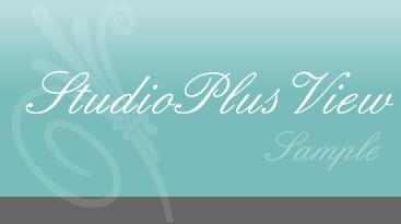ブログカスタマイズStudio+View