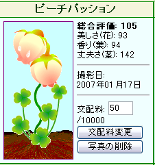 2007-1-17-1.png