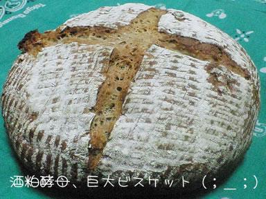 sakekasu20060712-1