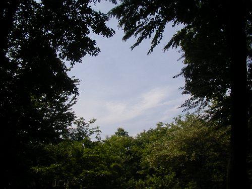20050522_22.jpg
