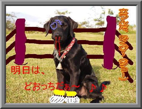 e_image.jpg