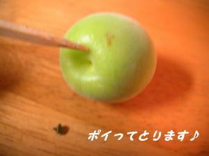 PIC_0259.jpg