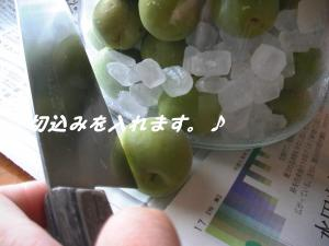 PIC_0261.jpg