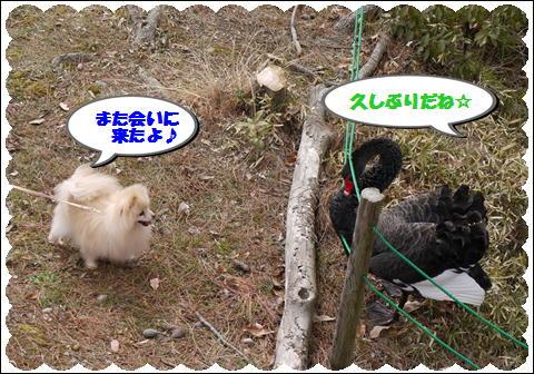 フラワーセンター201202②