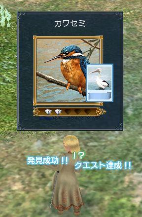 20060621163632.jpg