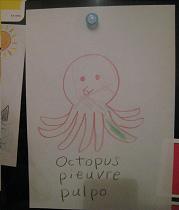 pic-octopus.jpg